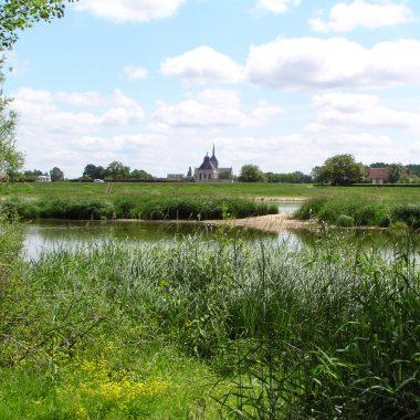 Les bords de Loire à Guilly